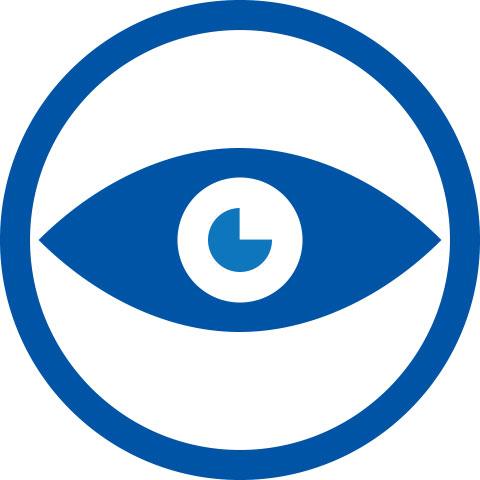 tsg_icon_vision